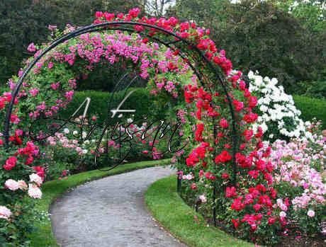 Кованые арки незаменимы для зонирования сада