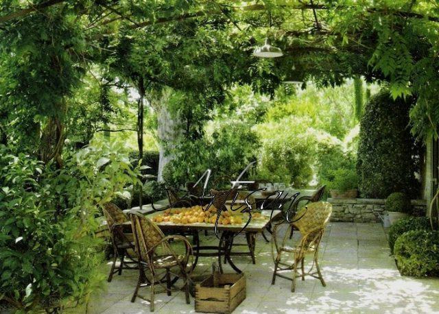 Вертикальное озеленение – классическое решение при оформлении садовой беседки